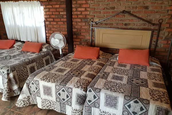 accommodation-in-amsterdam-mpumalanga-gallery-12